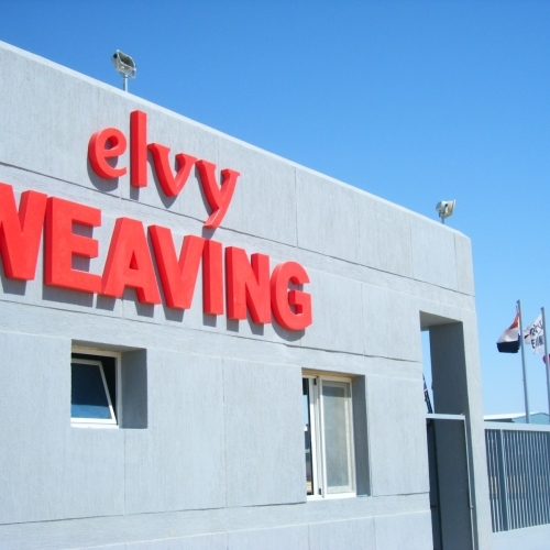Elvy Weaving's logo