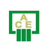 Al-Ahly Computer Equipments - ACE's logo