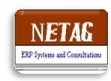 NETAG SYSTEMS & CONSULTING's logo