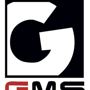 Global Media services's logo