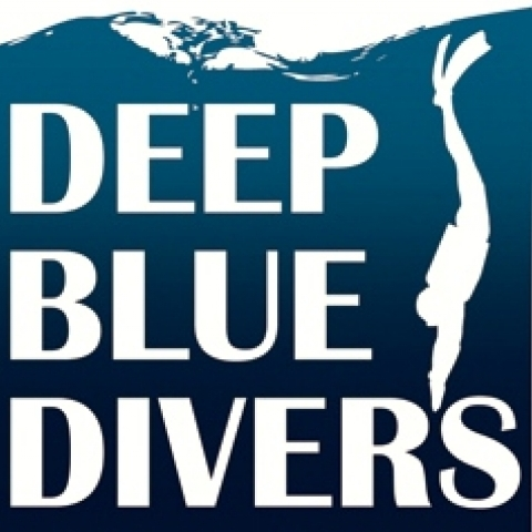 Deep blue Divers's logo