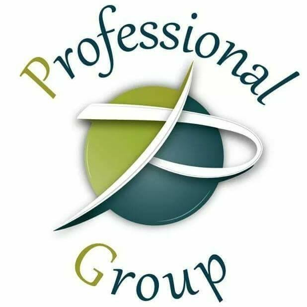 Professional Group's logo